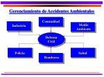 gerenciamiento de accidentes ambientales