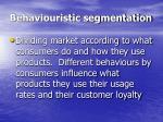 behaviouristic segmentation