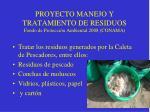 proyecto manejo y tratamiento de residuos fondo de protecci n ambiental 2008 conama