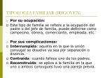 tipologia familiar irigoyen22