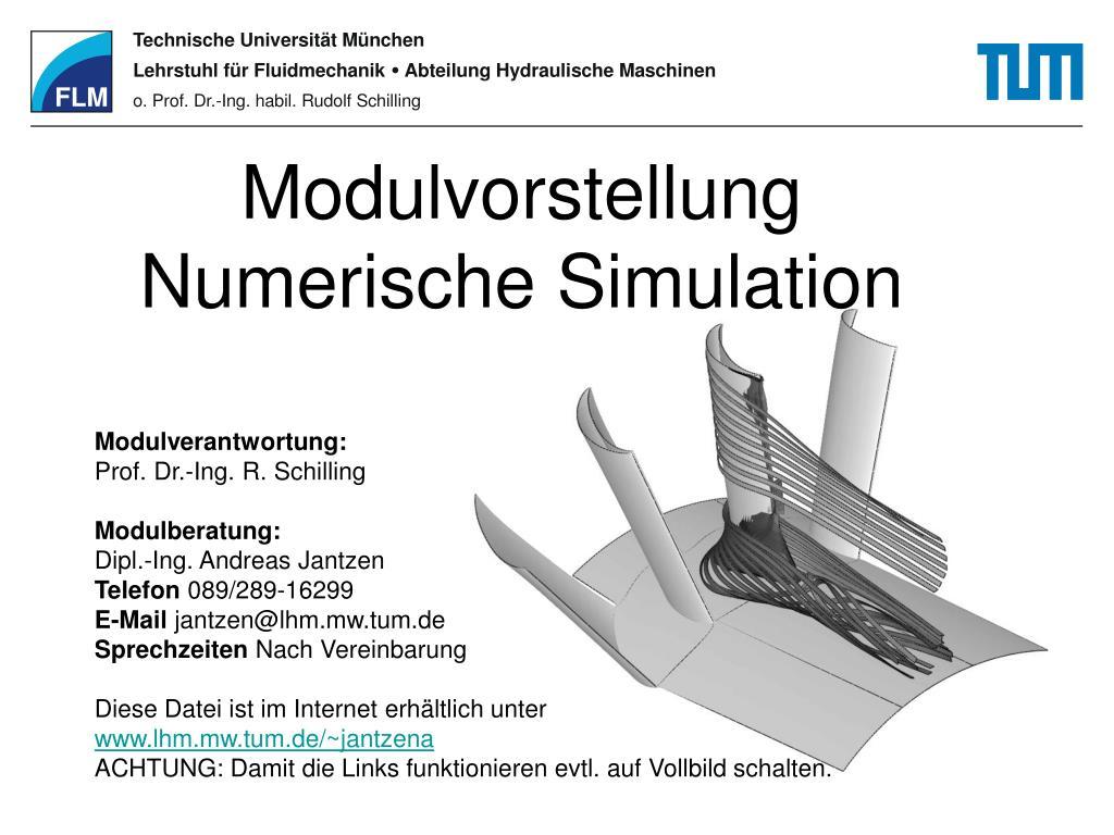 modulvorstellung numerische simulation l.