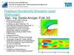 praktikum numerische simulation realer str mungen dipl ing danjiel anciger flm ss