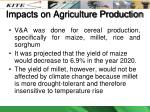 impacts on agriculture production