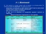 iv 2 biominerali