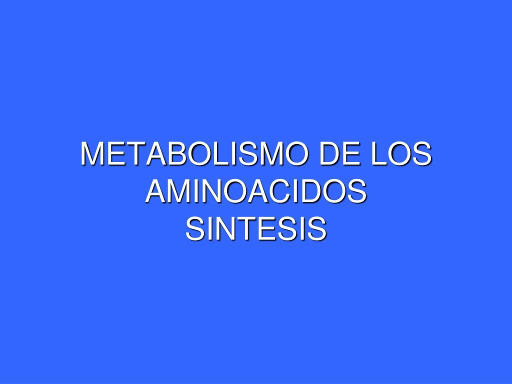 metabolismo de los aminoacidos sintesis l.