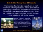 stakeholder perceptions of projects