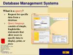 database management systems23