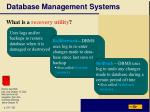 database management systems30