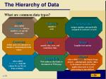 the hierarchy of data8
