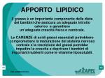 apporto lipidico