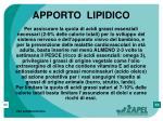 apporto lipidico48