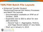 tsm fah batch file layouts
