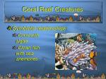 coral reef creatures13