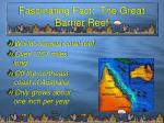 fascinating fact the great barrier reef