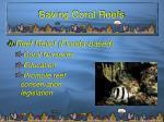 saving coral reefs20