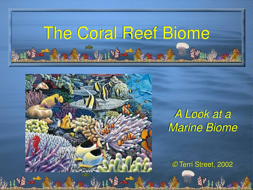 the coral reef biome l.