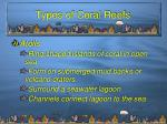 types of coral reefs4