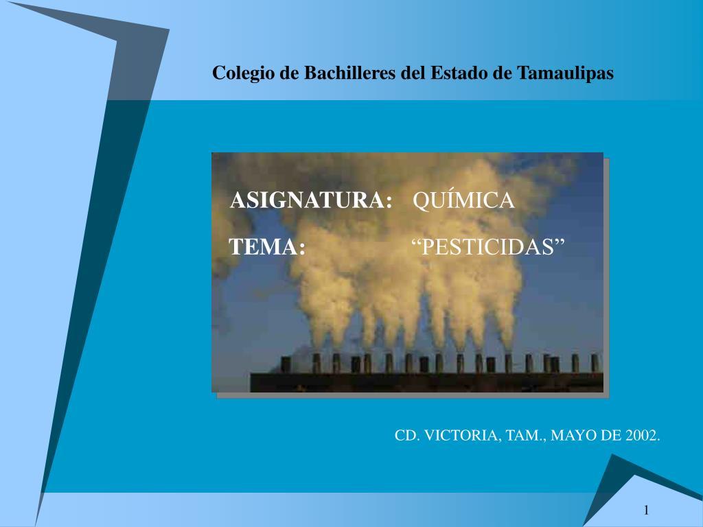 e9d4799de PPT - Colegio de Bachilleres del Estado de Tamaulipas PowerPoint ...