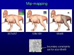 mip mapping