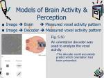models of brain activity perception