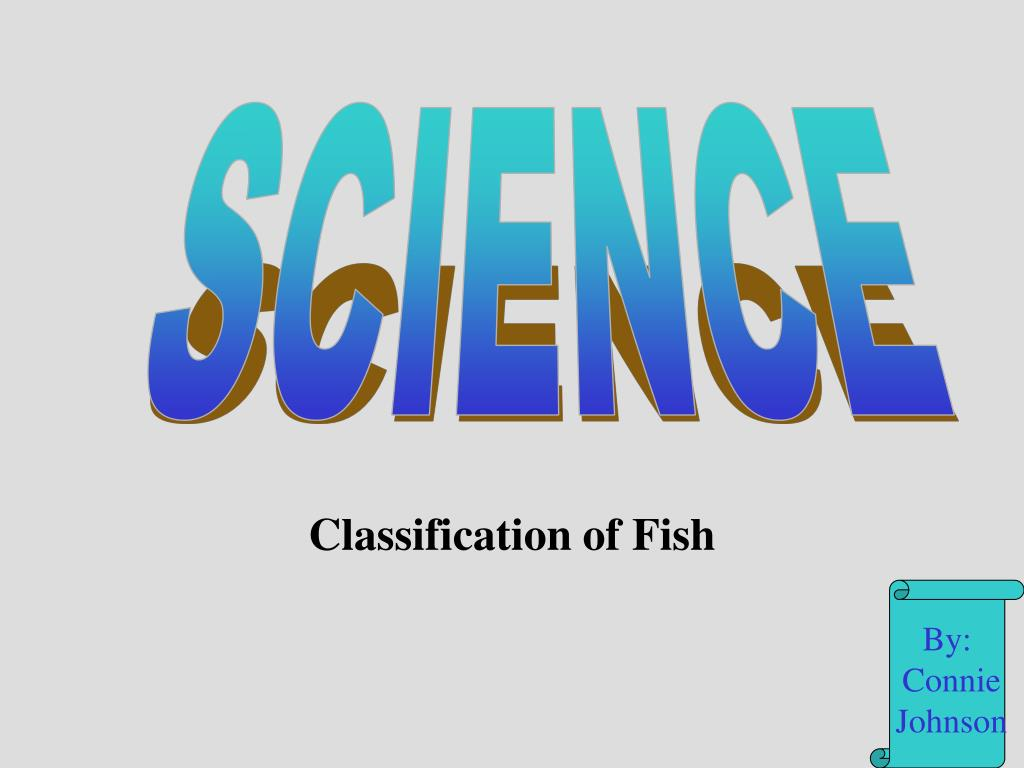classification of fish l.