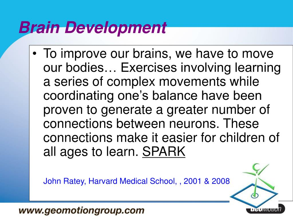 brain development l.