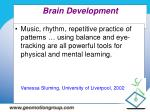 brain development14