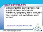 brain development15
