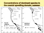 concentrations of dominant species in the coastal upwelling domain summer39
