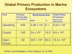 global primary production in marine ecosystems