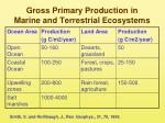 gross primary production in marine and terrestrial ecosystems
