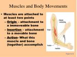 muscles and body movements63