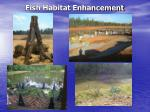 fish habitat enhancement