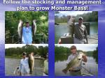 follow the stocking and management plan to grow monster bass
