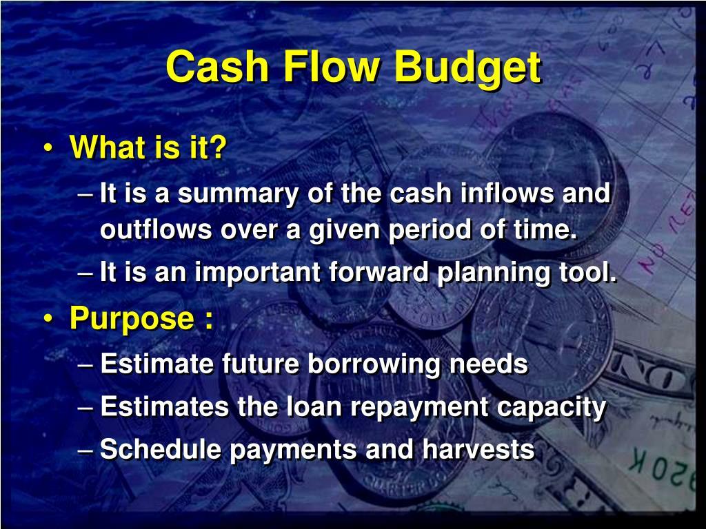 Cash Flow Budget
