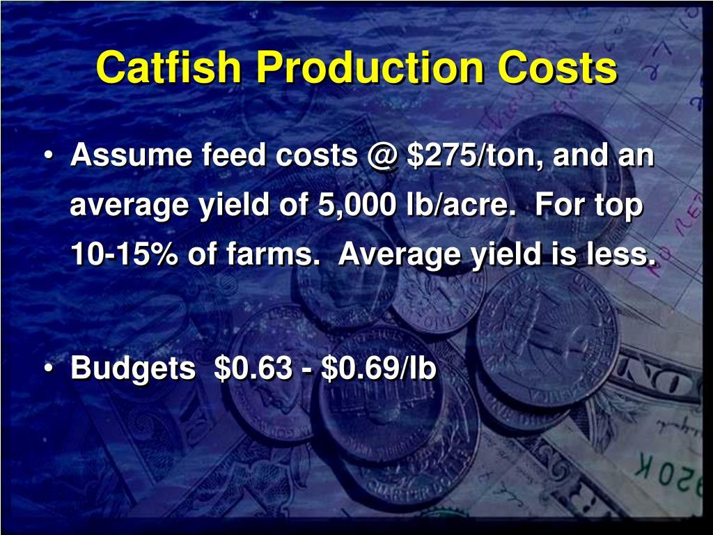 Catfish Production Costs