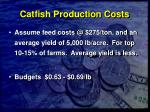catfish production costs