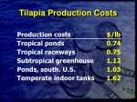 tilapia production costs