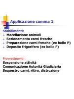applicazione comma 1