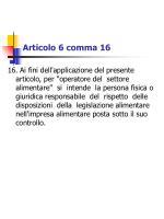 articolo 6 comma 16