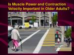 is muscle power and contraction velocity important in older adults