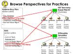 browse perspectives for practices