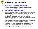 cag charter summary