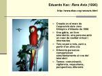 eduardo kac rara avis 1996 http www ekac org raraavis html
