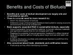 benefits and costs of biofuels