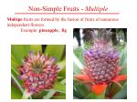 non simple fruits multiple