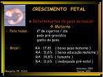 crescimento fetal12