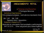 crescimento fetal13