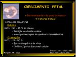 crescimento fetal15