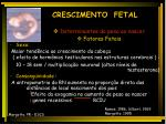 crescimento fetal16